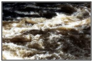 Vivre et laisser vivre le fleuve