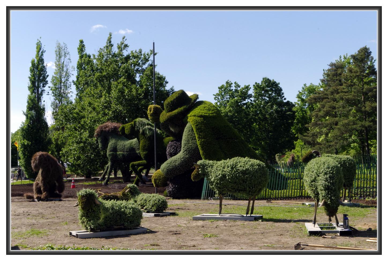 Exp dier les affaires courantes d couvrir le qu bec for Amis du jardin botanique