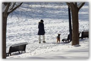 Se laisser convaincre d'une certaine réalité par le crissement des pas dans la neige tombante